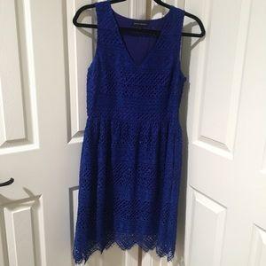 Royal blue Lace Banana Republic dress